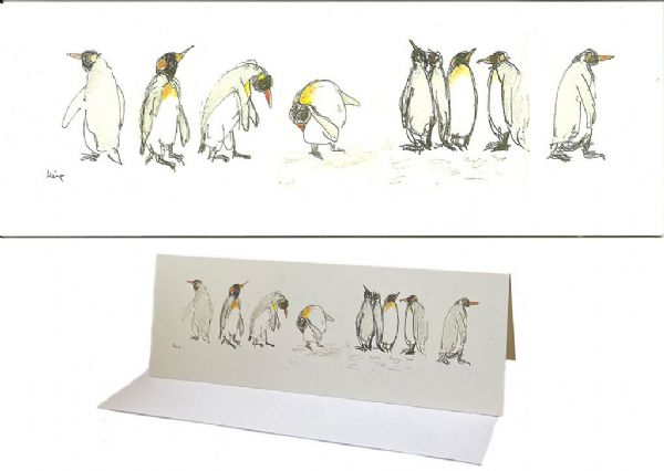 King Penguins, South Georgia cards pack of 5